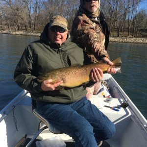 Dads Brown Trout White River Arkansas